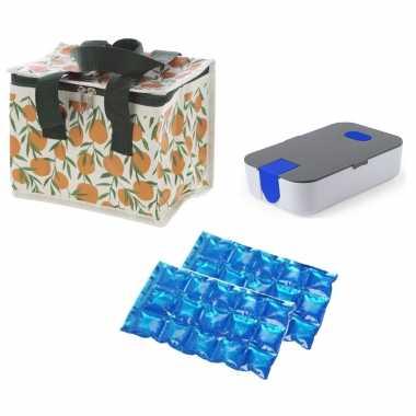 Kleine koeltas voor lunch sinasappels print met lunchtrommel en flexibel koelelement