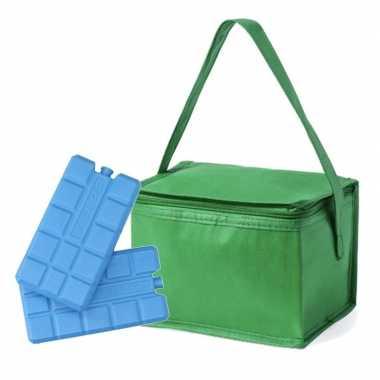 Koeltas van polypropyleen 6 blikjes groen inclusief 2 koelelementen