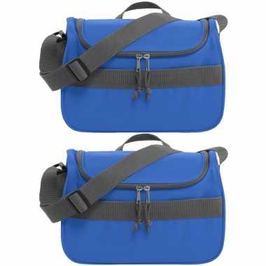 Set van 2x stuks kleine koeltassen voor lunch blauw 30 x 15 x 22 cm 10 liter