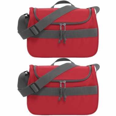 Set van 2x stuks kleine koeltassen voor lunch rood 30 x 15 x 22 cm 10 liter
