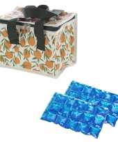 Kleine koeltas voor lunch sinasappels print met 2 stuks flexibele koelelementen
