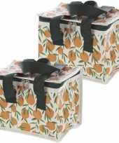Set van 2x stuks kleine koeltassen voor lunch met sinasappels print 16 x 21 x 14 cm 4 7 liter